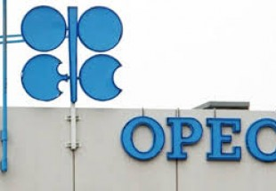 Iran warns against politicizing OPEC meeting