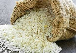 Vietnam is to export rice and shrimp to Iran