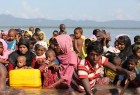 Rohingya Muslims crossing the sea routes to Bangladesh 2 (photo)