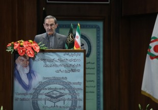 Unity provides ground for making headway: Velayati