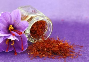 Iran aims to form leading brand for saffron