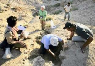 Iraq heavy rain uncovers trove of ancient artefacts