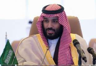 Power struggle in Saudi Arabia, Dynasty's future
