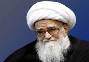 Clerics, thinkers can unite Muslim nations: Ayat. Safi Golpaygani