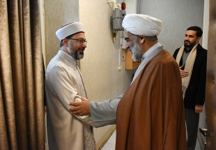 Intel. Deputy of Supreme Leader, Head of the Turkish Religious Organization meet (Photo)