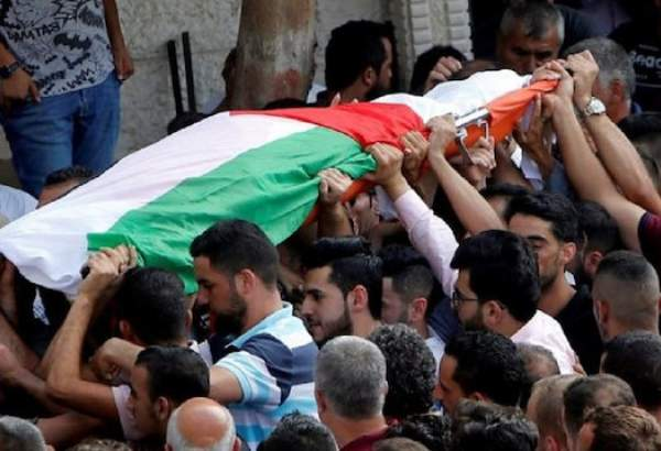 Over 200 Palestinians martyred in Israeli custody