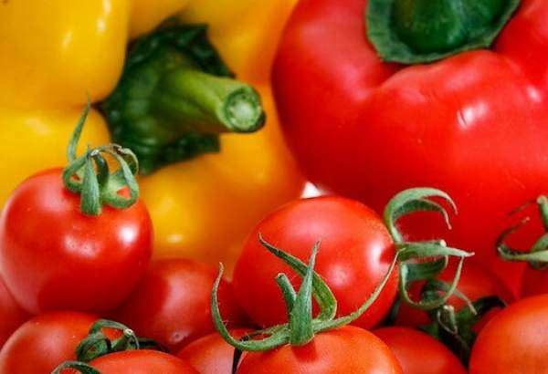 French agency warns of virus threatening tomatoes, peppers