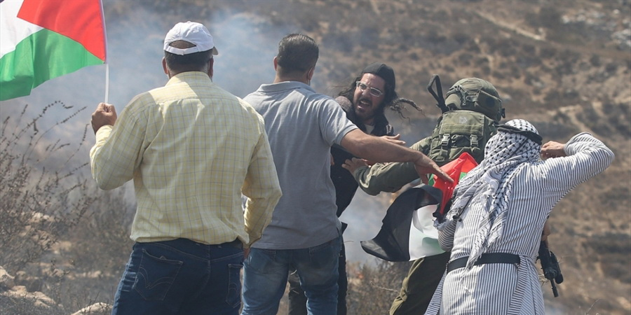 Israeli settlers vandalize Palestinian agricultural lands in West Bank (photo)